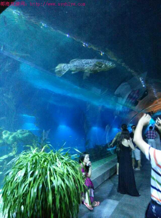 海南三亚海底世界餐厅